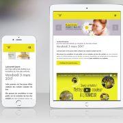 design-graphique-site-internet-journee-jaune-amfe-paris-responsive-design