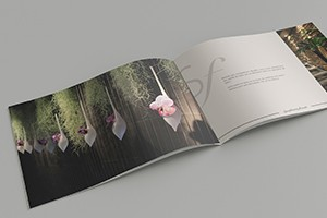 graphiste-freelance-montpellier-paris-brochure