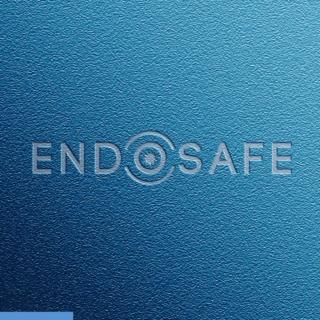 Création logotype Endosafe #creationlogo #logo #designlogo #logotype
